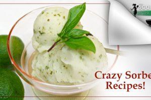 Crazy Sorbet Recipes!