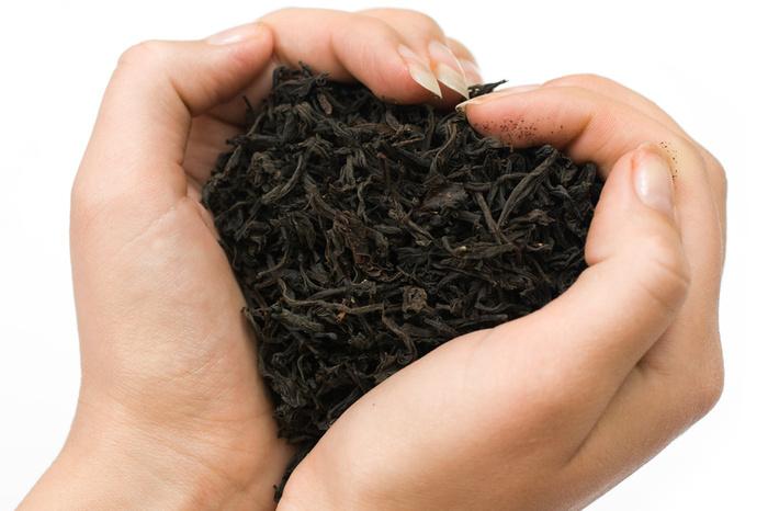 Dark Tea Benefits
