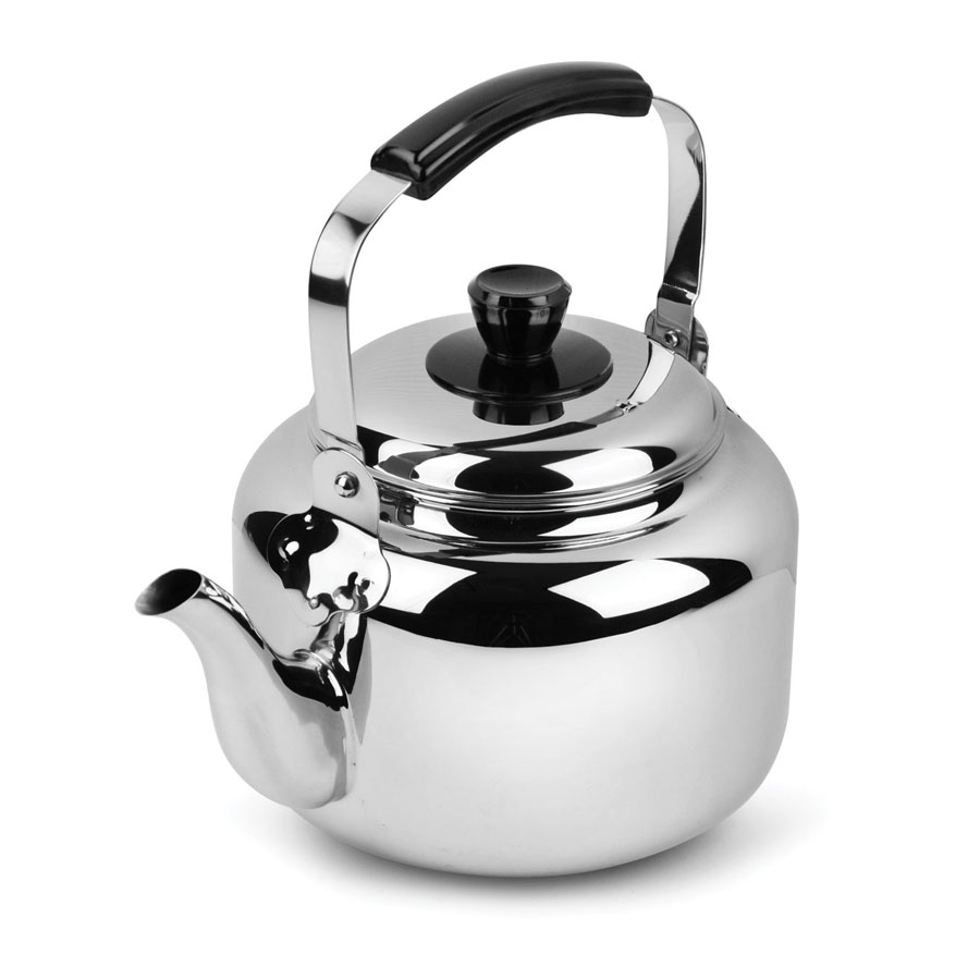 Stainless Tea Kettle