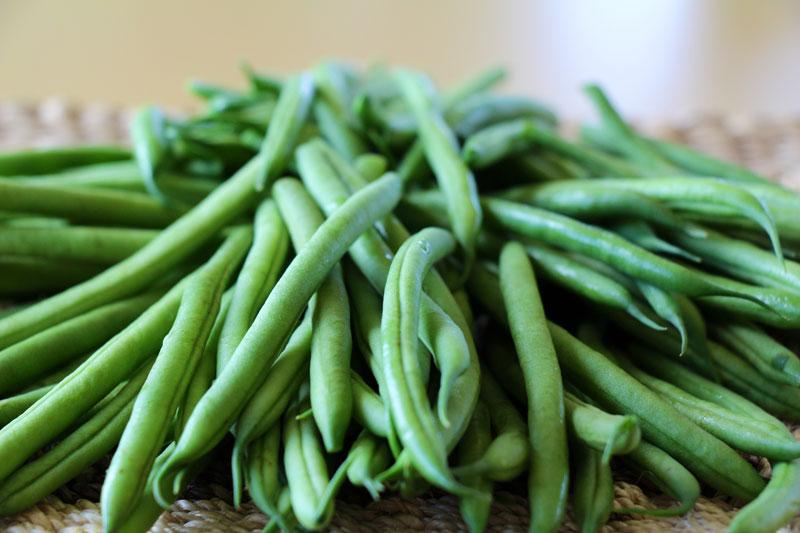 haricort verts